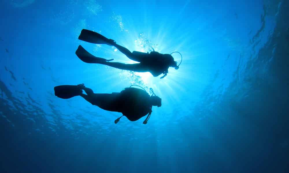 La plongée sous-marine, un sport, une passion